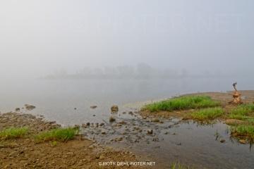 Mgła w Smoszewie
