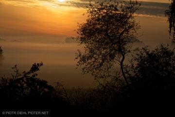 Jesienne mgły